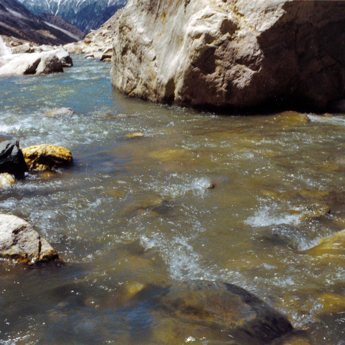 Gangesquelle